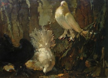 Doves In The Night